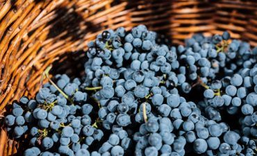 grapes-wicker-basket_158595-4101